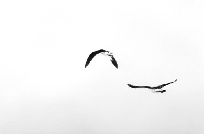 Piece #W001 (Two Birds)